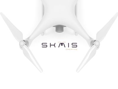 Logo Design Drone Company